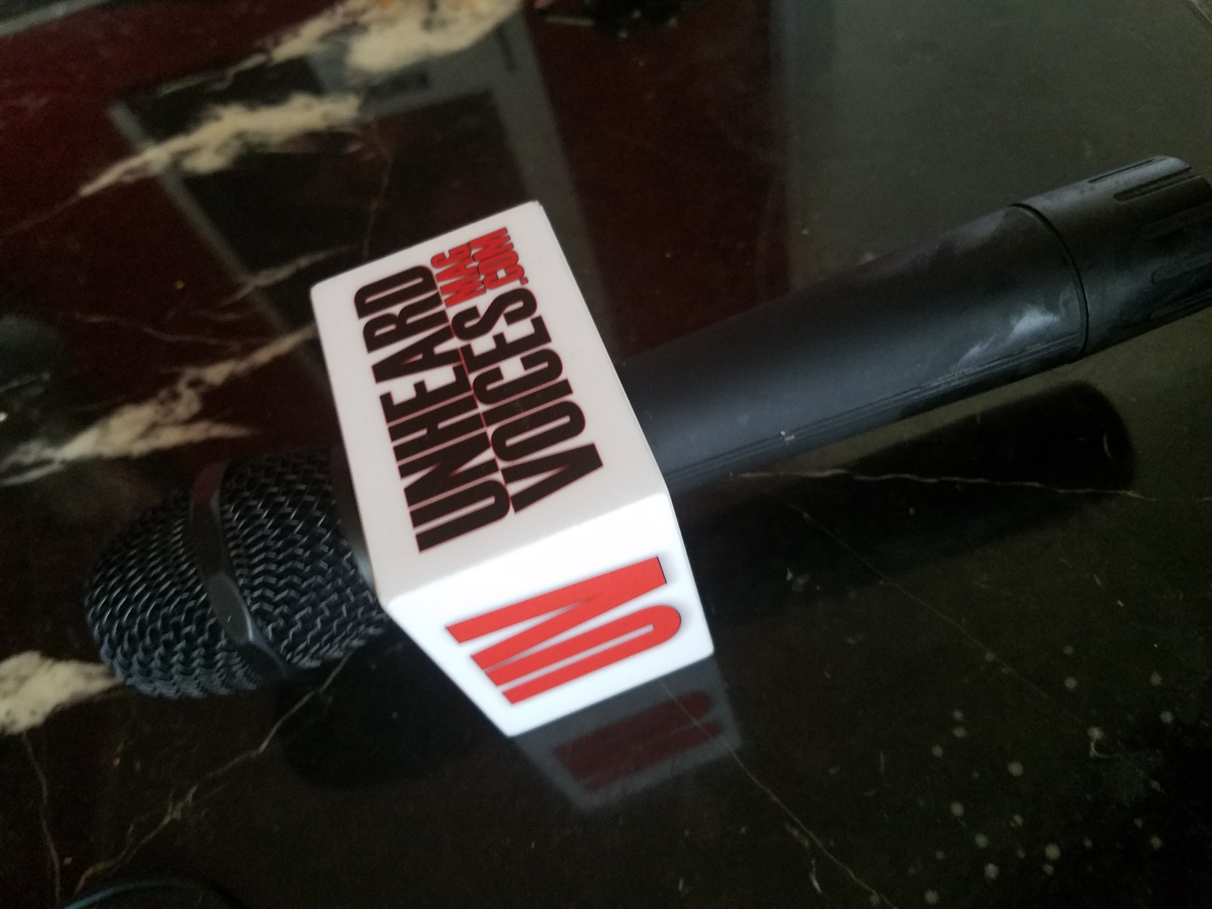 Unheard Voices Microphone